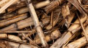 Biomass-Waste-to-energy